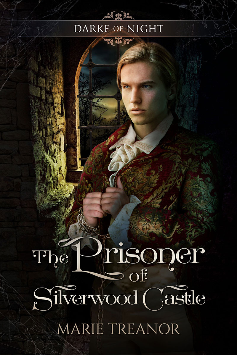 The Prisoner of Silverwood Castle